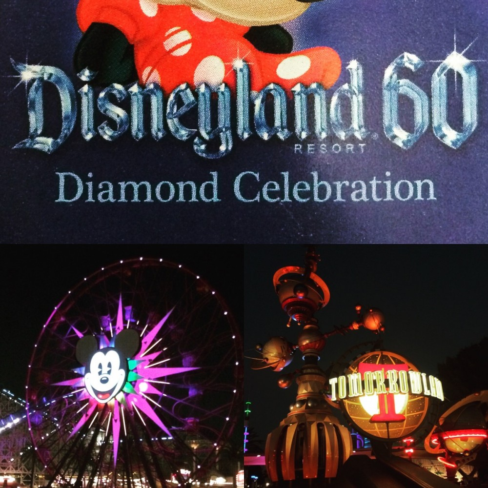 Disneyland Fun + Research Day!